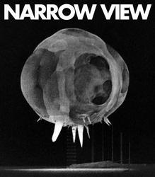 Profilový obrázek Narrow View