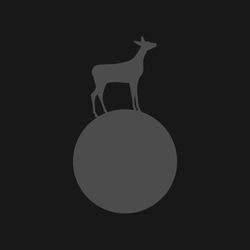 Profilový obrázek moon&doe