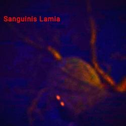 Profilový obrázek Sanguinis Lamia