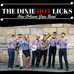 Profilový obrázek The Dixie Hot Licks