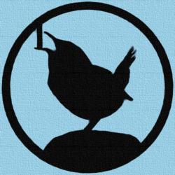 Profilový obrázek Aled Wren