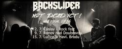 Profilový obrázek Backslider