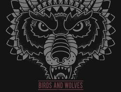 Profilový obrázek Birds & Wolves