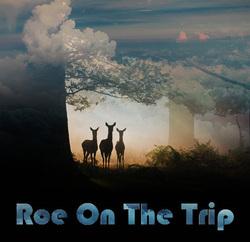 Profilový obrázek Roe On The Trip
