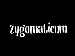 Profilový obrázek Zygomaticum