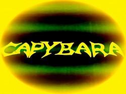 Profilový obrázek Capybara