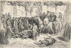 Profilový obrázek CRUELTY OF BLOOD