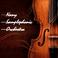 Profilový obrázek Nany Samplephonic Orchestra