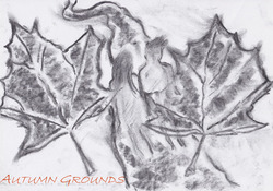 Profilový obrázek Autumn grounds