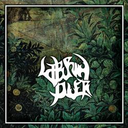 Profilový obrázek Laburnum Diver