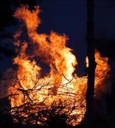 Profilový obrázek Hořící Chroští