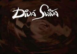 Profilový obrázek Diwa Swiňa