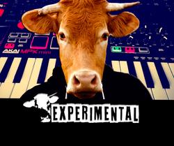 Profilový obrázek ExperiMental