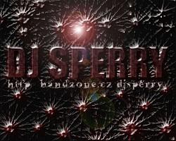 Profilový obrázek The End Dj Sperry