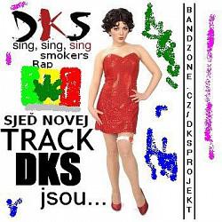 Profilový obrázek DKS jsou... (2010) ...