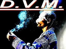 Profilový obrázek D.V.M.