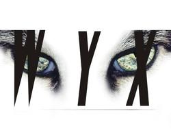 Profilový obrázek WYX