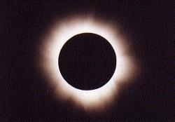 Profilový obrázek Eclipse of the brain