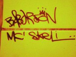 Profilový obrázek Skeli a Babar