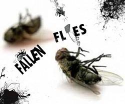 Profilový obrázek Fallen Flies