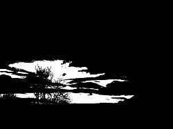 Profilový obrázek Fallen Sky