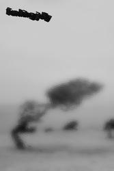 Profilový obrázek Funking Jelly