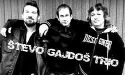 Profilový obrázek Števo Gajdoš Trio