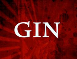 Profilový obrázek GIN