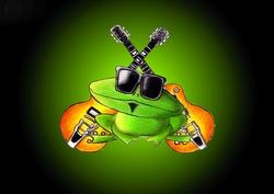 Profilový obrázek Frog in Fog
