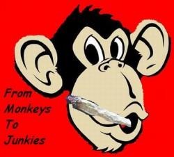 Profilový obrázek From monkeys to Junkies