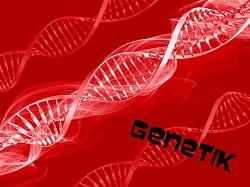 Profilový obrázek Genetik