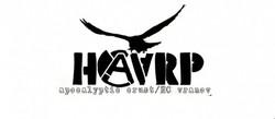 Profilový obrázek Haarp