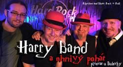 Profilový obrázek Harry band