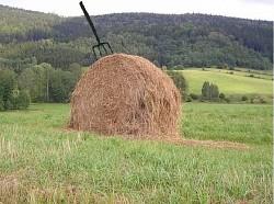 Profilový obrázek Hay and Haulm