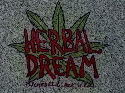 Profilový obrázek Herbal Dream