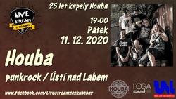 Profilový obrázek: Houba