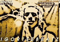 Profilový obrázek IgorTee