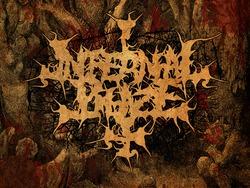 Profilový obrázek Infernal Blaze