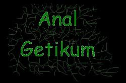Profilový obrázek Anal Getikum
