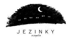 Profilový obrázek Jezinky