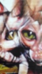 Profilový obrázek Lesní zvěř