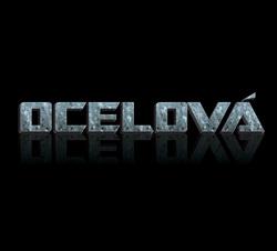 Profilový obrázek Ocelová