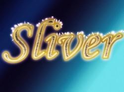 Profilový obrázek Sliver