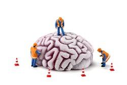 Profilový obrázek Mindwork
