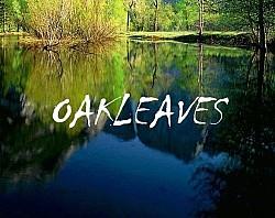 Profilový obrázek Oakleaves