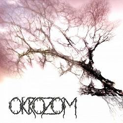 Profilový obrázek Okrozom