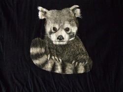 Profilový obrázek Panda