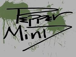 Profilový obrázek Pepper Mind