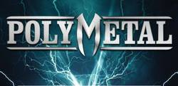 Profilový obrázek Polymetal