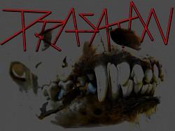 Profilový obrázek Prasatan